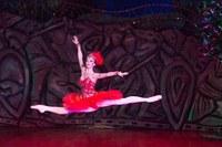 Georgia-Tbilisiko Opera eta Balleta: Six Dances - Suzko txoria