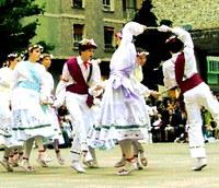 Euskal Herriko Dantzari Eguna 2010: egitaraua eta xehetasunak