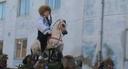 Agnita: Urzeln Carnival