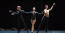 Malandain Ballet Biarritz: Ederra eta Piztia